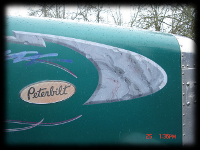 Marble Paint Effect on Green Peterbilt Bigrig Truck